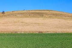 Paysage du Sussex images stock