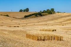 Paysage du Sussex d'été images stock