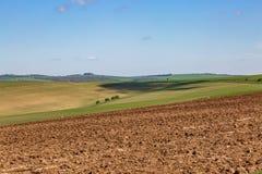 Paysage du Sussex de ressort photographie stock libre de droits