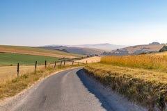 Paysage du Sussex pendant une période de sécheresse images libres de droits