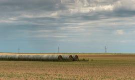 Paysage du Texas avec des rangées des balles de foin prêtes pour le transport Photo libre de droits