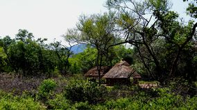 Paysage du village de la tribu de Hamar, Turmi, Ethiopie Photos libres de droits