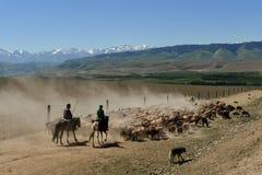 Paysage du Xinjiang Photographie stock