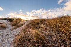 Paysage dunaire danois Photo libre de droits