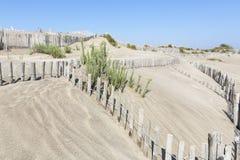 Paysage dunaire, France du sud photo stock