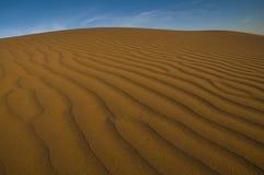 Paysage dunaire, La Pampa, Argentine photographie stock libre de droits
