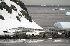 Paysage en Antarctique Image stock