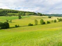 Paysage en bois de Vienne en Autriche Images stock
