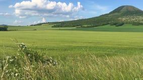 Paysage en montagnes de Bohème centrales, République Tchèque banque de vidéos