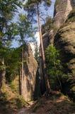 Paysage en nature de ressortissant d'Adrspach-Teplice de formations de roche Images libres de droits