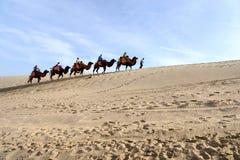 Paysage en parc de Mingsha Shan images stock