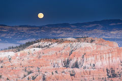 Paysage en parc national de canyon de bryce Photos stock