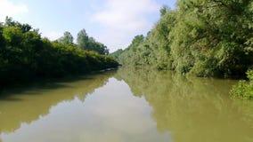 Paysage en parc national de delta de Danube banque de vidéos