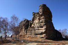 Paysage en pierre de forêt de prairie Photographie stock