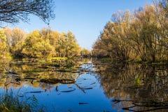 Paysage en retard d'automne. photo stock