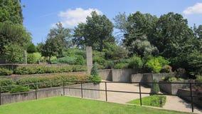 Paysage en terrasse Photos libres de droits