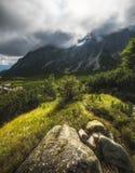 Paysage ensoleillé de montagne avec des usines et des roches photo stock