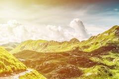 Paysage ensoleillé de montagne d'été Images libres de droits