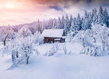 Paysage ensoleillé d'hiver dans la forêt de montagne Photographie stock