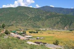 Paysage entre Thimphou et Gangtey - le Bhutan Images stock