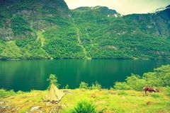 Paysage et fjord de montagnes en Norvège Photos libres de droits