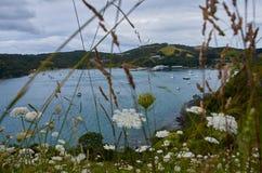 Paysage et paysages à travers la terre et l'eau en île N de Waiheke Image stock