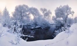 Paysage féerique d'hiver Photo stock