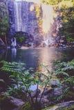 Paysage féerique enchanté - cascade de Wairoa/Te Wairere dans Ker images libres de droits