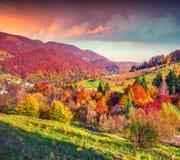 Paysage fantastique d'automne de couleurs dans les montagnes carpathiennes Image libre de droits