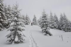 Paysage fantastique d'hiver Photos stock