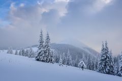 Paysage fantastique d'hiver Images stock