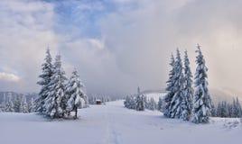 Paysage fantastique d'hiver Images libres de droits