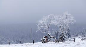 Paysage fantastique d'hiver Image libre de droits