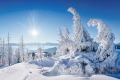 Paysage fantastique d'hiver Coucher du soleil magique dans les montagnes par jour givré À la veille des vacances La scène dramati photos libres de droits