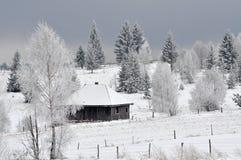 Paysage féerique d'hiver avec des sapins Photos stock