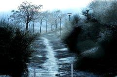 paysage foncé illuminé Images stock