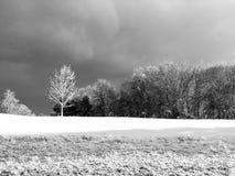 Paysage frais de chutes de neige Images libres de droits