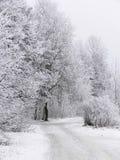 Paysage froid de l'hiver Photographie stock