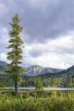 Paysage froid de montagne d'été Photographie stock libre de droits