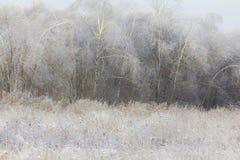 Paysage générique d'hiver Image stock