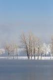 Paysage gelé d'arbres d'hiver Photographie stock