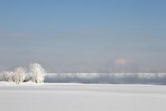Paysage gelé d'hiver avec les arbres givrés Photo stock