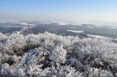 Paysage gelé et de neige Photos stock