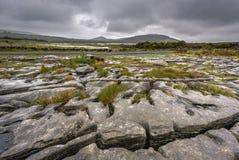 Paysage Glaciated de karst du Burren avec la montagne de Mullaghmore, liège du comté, Irlande photographie stock