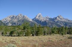 Paysage grand de parc national de Teton Photos stock