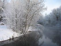 Paysage hivernal de fleuve Photo stock