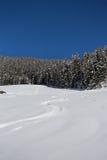 Paysage hivernal de montagne avec le soleil Images stock