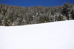 Paysage hivernal de montagne avec le soleil Photo libre de droits