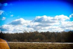 Paysage horizontal de forêt avec le fond clair de fuite Image libre de droits