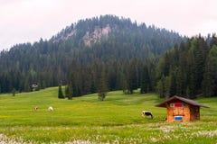 Paysage idyllique d'été en dolomites Photographie stock